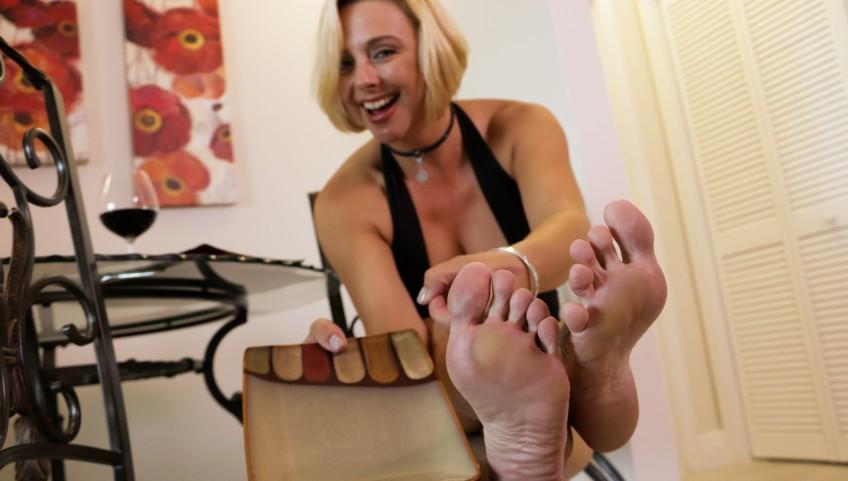 Domestic Dinner Slave
